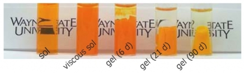 Formation of a Gel from Cadmium Sulfide Nanoparticles